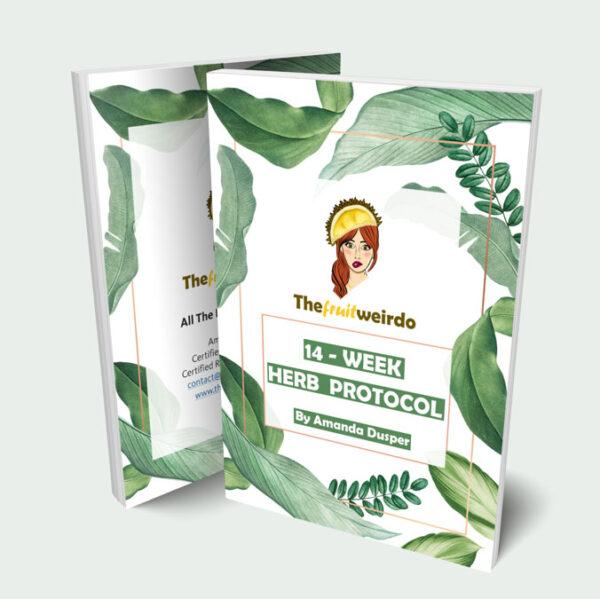 3D 14 Herb Protocol Mockup SMANJENA