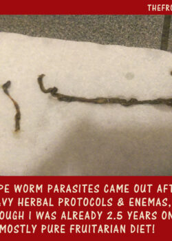 ROPE-WORMS--ON-FRUITARIAN-DIET